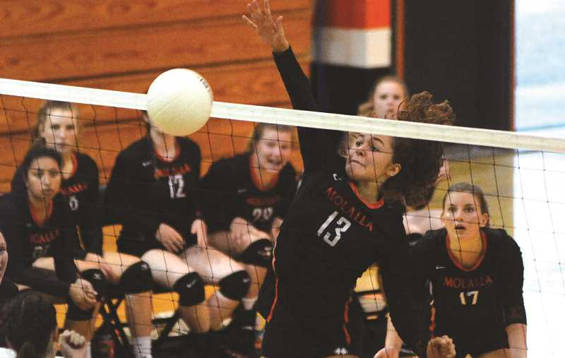 FILE PHOTO - The Molalla High volleyball team finished its shortened season with a pair of losses to North Marion during the week.