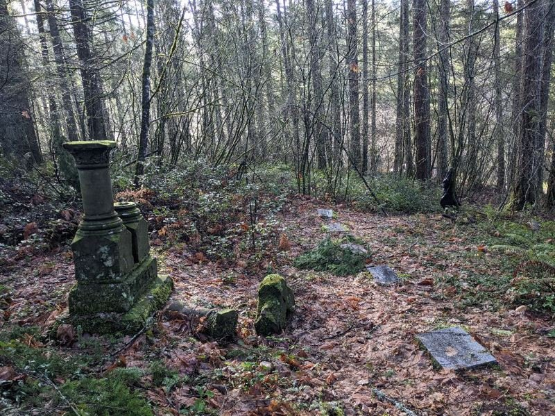 COURTESY PHOTO: JAMES MORIARTY - The old German Hill Cemetery near Estacada is getting new life thanks to James Moriarty.