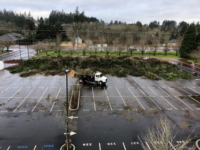 COURTESY PHOTO: CITY OF TUALATIN - Debris was brought to Tualatin High School by residents following the ice and snow storm in February 2021.