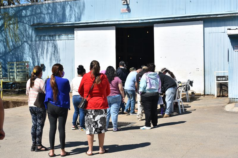 PMG PHOTO: TERESA CARSON - Nursery employees and their family members ine up to check in for their vaccines at J. Frank Schmidt & Sons Co. outside Boring.