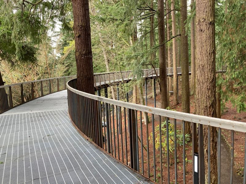 COURTESY PHOTO: PORTLAND PARKS & RECREATION - The canopy walkway is one of the many things added to Leach Botanical Garden as it reopens to the public.
