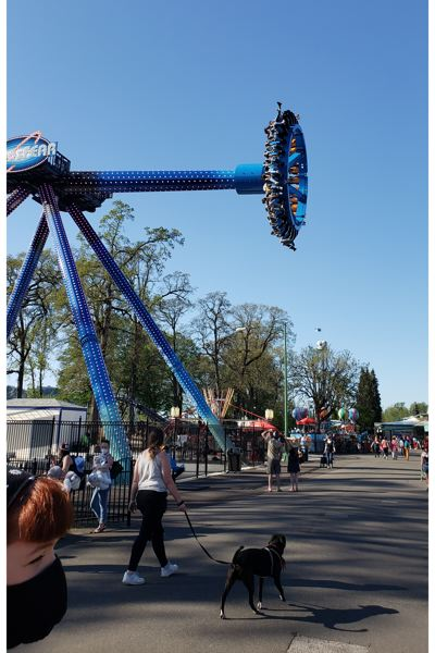 COURTESY PHOTO: OAKS PARK - AtmosFEAR is the newest ride at Oaks Amusement Park, which welcomed visitors at its reopening last weekend.