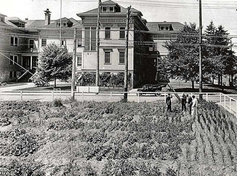 COURTESY BROOKLYN HISTORICAL SOCIETYCOURTESY BROOKLYN HISTORICAL SOCIETY - The second Brooklyn School structure stood over the Brooklyn neighborhood - right where Brooklyn Park is now. This Victory Garden was started by the faculty of Brooklyn School so students could learn how to raise vegetables and fruits on their own.
