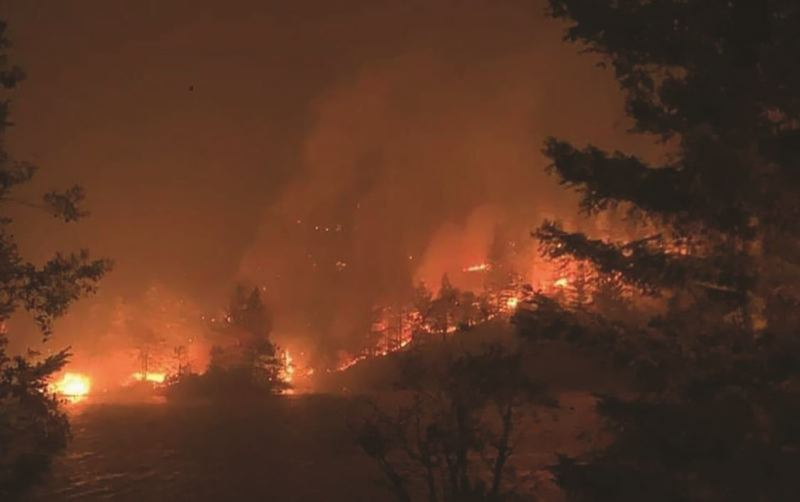 Lloyd's of London could once again pay for Oregon wildfire costs