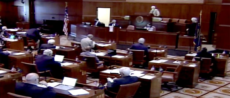 COURTESY PHOTO - Oregon senators (here in a screenshot from their socially disstanced session) took action on several bills Monday, April 19.