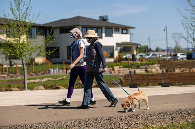 PAMPLIN MEDIA GROUP: JAIME VALDEZ - Dog walking is popular at Reed's Crossing. Remote workers tend to all come out at 4.30pm and walk themselves, done for the day.