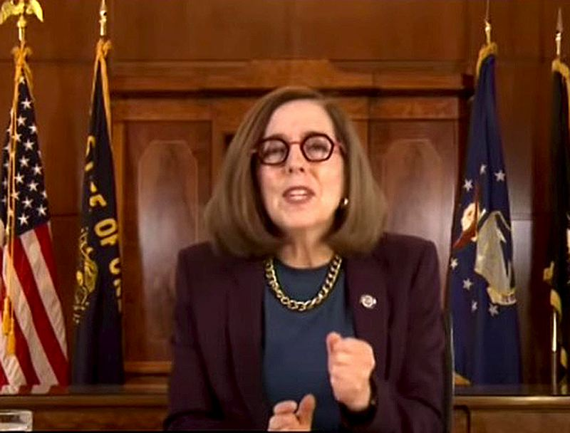 COURTESY PHOTO: VIDEO SCREENSHOT - Oregon Gov. Kate Brown defended her new orders during an online Friday, April 30, press conference.