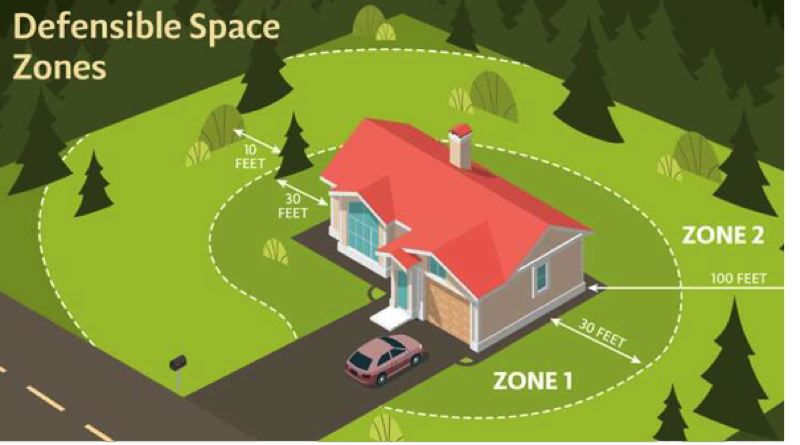 COURTESY OF CLACKAMAS FIRE - Defensible space is critical to widlfire preparedness as a property owner in areas that interface with forests and wildland.