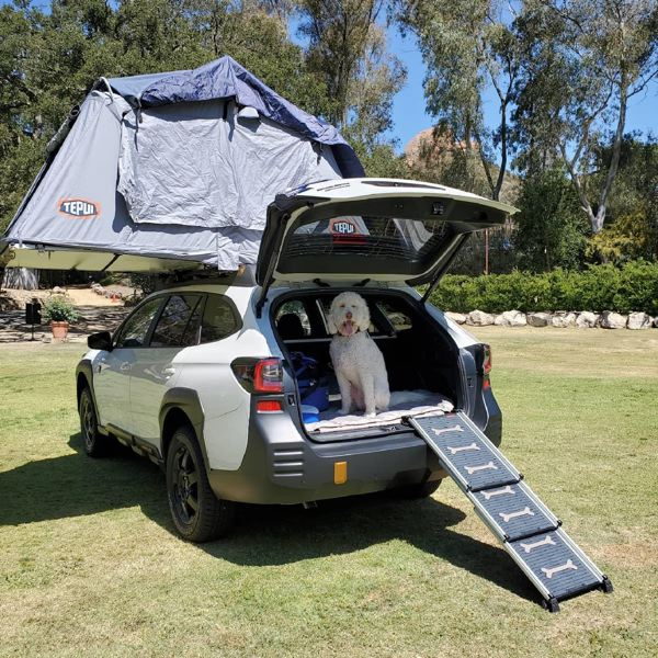 PMG PHOTO: JEF ZURSCHMEIDE - The 2021 Subaru Outback Wilderness includes roof rails that can hold 700 when parked, enough for a roof-mounted tent for camping.