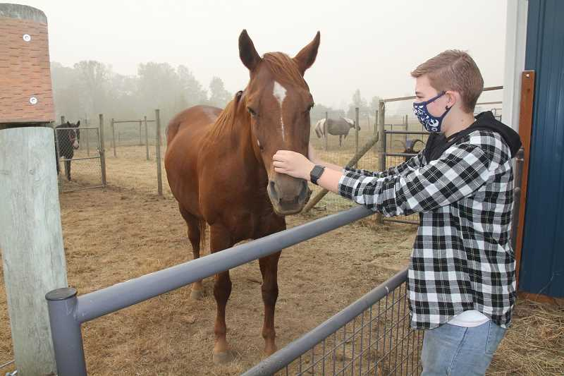 PMG PHOTO: JUSTIN MUCH - Oliver Taylor pets a rescued horse at the school grounds in September when Gervais FFA housed more than 40 various livestock displace by wildfires.