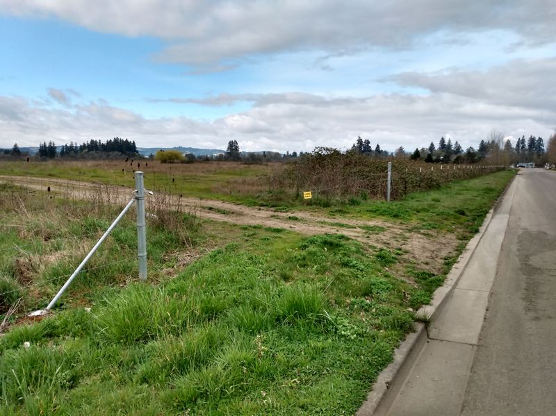 COURTESY PHOTO: CITY OF HILLSBORO - An undeveloped city-owned grassy field along Southwest Wood Street in Hillsboro will be the location of a new 24/7 managed camp for homeless people.