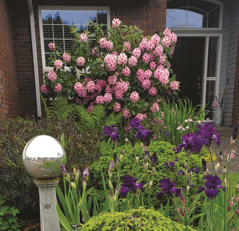 PMG PHOTO: DONNA BRYANT - Bob and Deni Cooperrider have made a lot of colorful additions to their property in the 20 years they've lived in Canby. So much so that the Canby Garden Club named them the Yard of the Month for June.