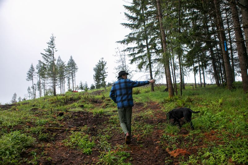 PMG PHOTO: JAIME VALDEZ - Paul Clement of Estacada walks through his property after the Riverside Fire in 2020. A slate of bills in the 2021 Oregon Legislature are designed to make fire recovery easier.