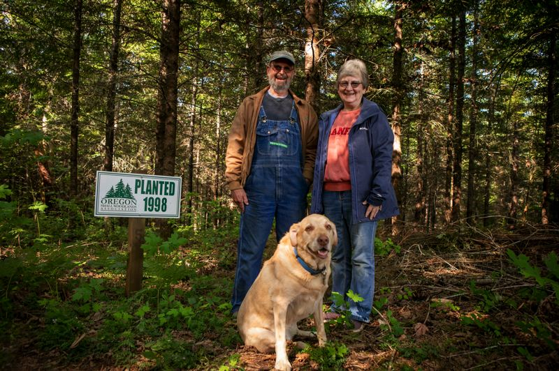 PMG PHOTO: JAIME VALDEZ - Bob and Bonnie Shumaker stand with their yellow Labrador, Bailey, near trees that were planted in 1998 on their Shumaker Tree Farm near Banks.