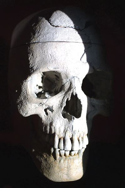 FILE PHOTO - A skull displayed at OMSI in 2002 is shown here.