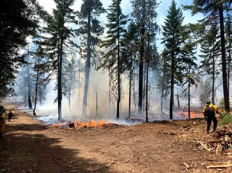 PHOTO BY JAVIN DIMMICK - As of Monday morning, the S-503 Fire near Simnasho and Pine Grove between Highway 26 and Highway 216 has grown to 6,200 acres and is 0% contained.