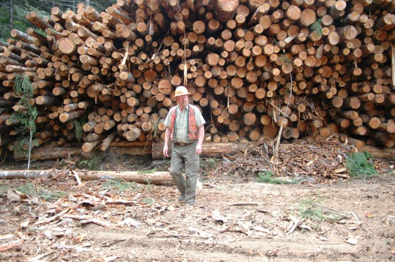 PMG FILE PHOTO: - Floyd Walker, a timber sale administrator for the Clackamas River Ranger District of the Mt. Hood National Forest, inspects a load of logs gathered by Timberline Helicopters crews.