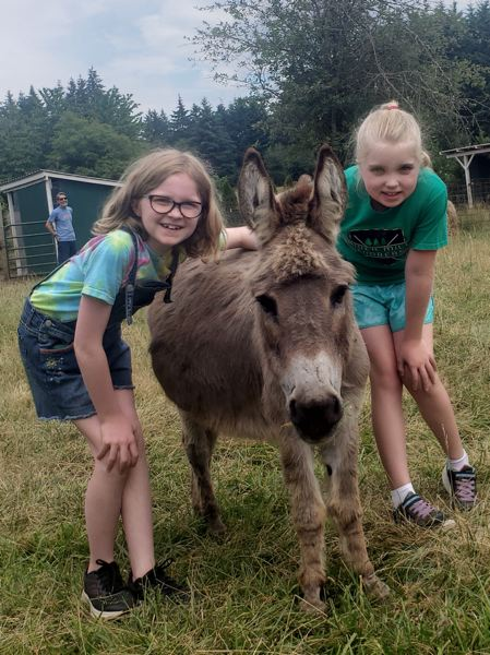 COURTESY PHOTO - River Mill students Aliana Huff and Shelby Munds pose with Val the miniature Donkey during a visit to Out to Pasture to drop off a donation to the animal sanctuary.