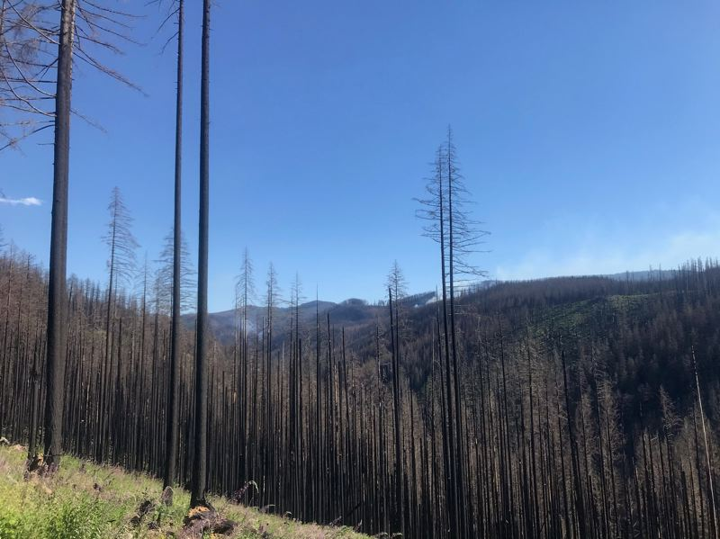 COURTESY PHOTO: U.S. FOREST SERVICE - The Riverside Fire area, pictured here, was the source of holdover smoke that could be seen from Estacada at the beginning of this week.