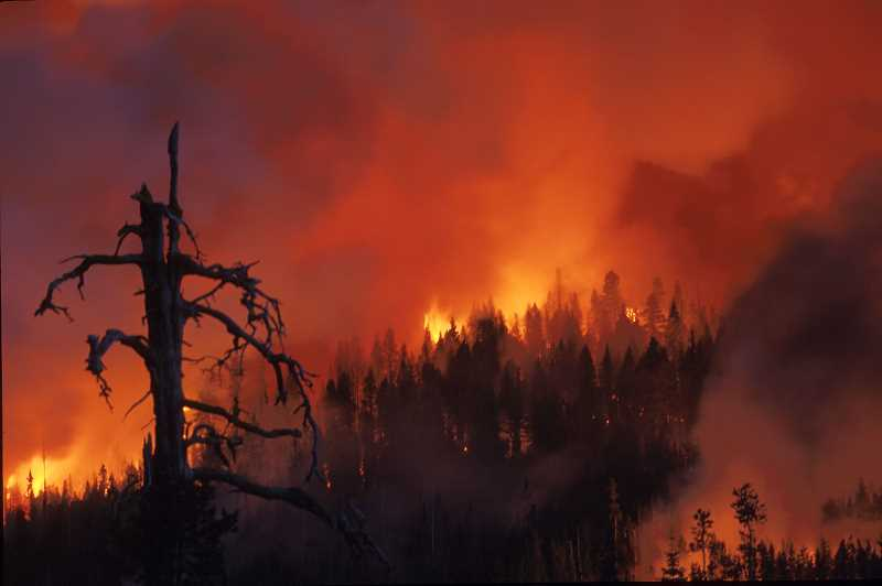 PMG FILE PHOTO - Forest officials to focus on limiting human-caused wildfires as dry conditions make fires likely this summer.