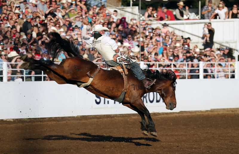 COURTESY PHOTO: ST. PAUL RODEO - Bareback rider Austin Foss leads his event at the St. Paul Rodeo with a score of 87.5 points on Flying Five Rodeos Cougar Country. He is from Terrebonne, Oregon. Photo by Hoot Creek.