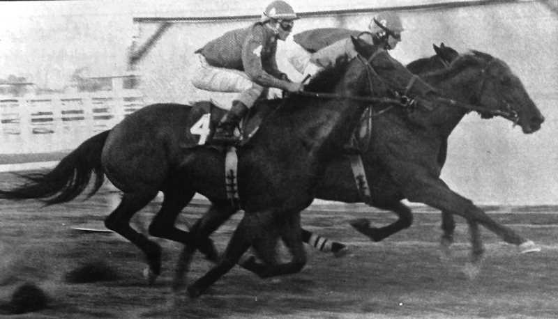 CENTRAL OREGONIAN - July 11, 1996: Tell Me The West (foreground) and Little Kiwi stride side-by-side early in Wednesday's third race.
