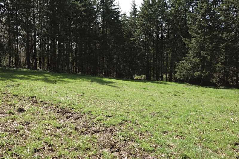 COURTESY PHOTO: CLACKAMAS COUNTY - A park on May Road, between Oregon City and Canby, will be developed with educational components, per an agreement with the former Gladstone elementary school principal who owned the land.