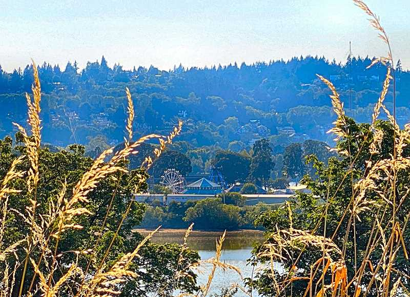 """PAIGE WALLACE - The record-smashing """"heat dome"""" trapped hazy, stagnant air over Southeast Portland – including at Oaks Amusement Park and the Oaks Bottom Wildlife Refuge, as seen here from S.E. Sellwood Boulevard."""