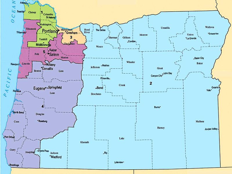 COURTESY PHOTO: OREGON CAPITAL BUREAU - Some Oregon Democrats are unhappy about congressional redistricting deal made by House Speaker Tina Kotek and Republican House leaders.