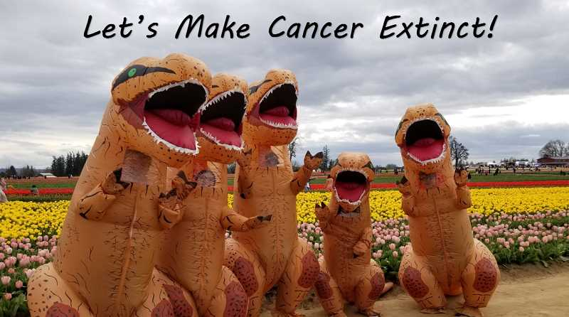 COURTESY PHOTO: RELAY FOR LIFE - Participants work to make cancer extinct; Relay for Life will take place at Wooden Shoe Tulip Farm, 38814 Meridian Road, Woodburn.