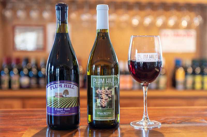 (PMG PHOTO: CHRISTOPHER OERTELL) - Plum Hill Vineyards in Gaston recently sold to a group of craft beer owners spearheaded by Ridgewalker Brewing in Forest Grove.