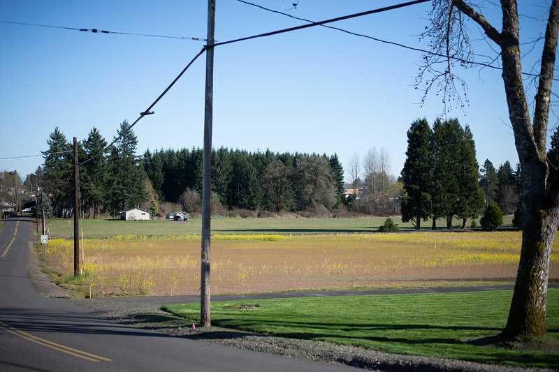 PMG FILE PHOTO - The Grabhorn property neighbors the existing Veterans Park in Scappoose.