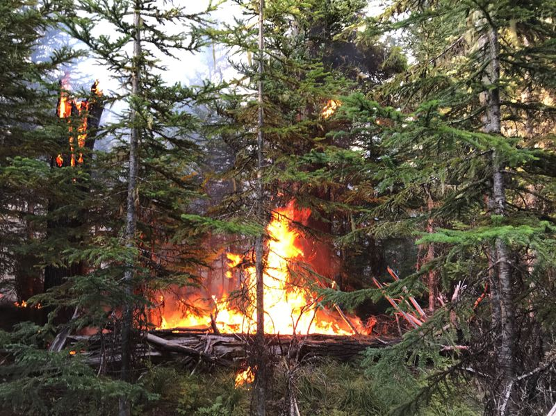 COURTESY PHOTO: MT. HOOD NATIONAL FOREST - The Cooper Creek Fire is about six acres in size and burning one mile north of Timothy Lake.