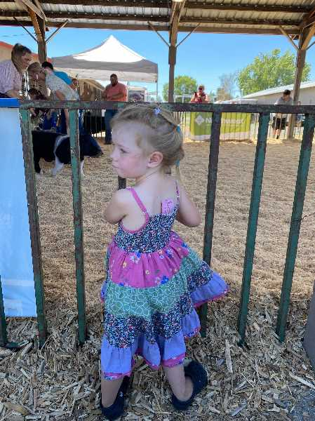 PHOTO COURTESY ASHLEY MERRITT - Three-year-old Ollie Mae Petersen pictured at the recent fair.