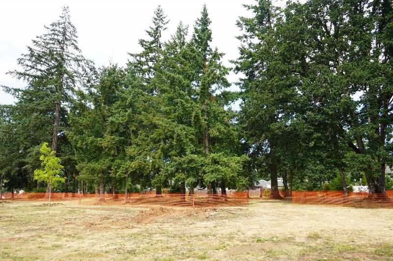 COURTESY PHOTO : CITY OF OC - Located at 11720 Hazelnut Ave., park construction will have minimal impact to the existing mature tree canopy, an important feature for the neighbors.