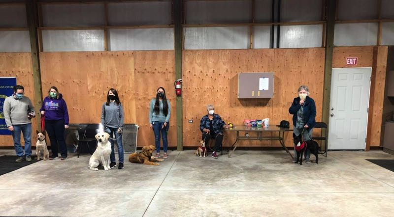 COURTESY PHOTO: DAY HILL DOG TRAINING - Day Hill Dog Training offers several group classes.