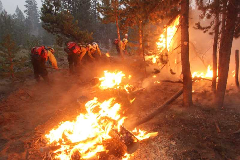 COURTESY PHOTO: ODF - Firefighters battle flames at the Bootleg Fire in Southern Oregon.
