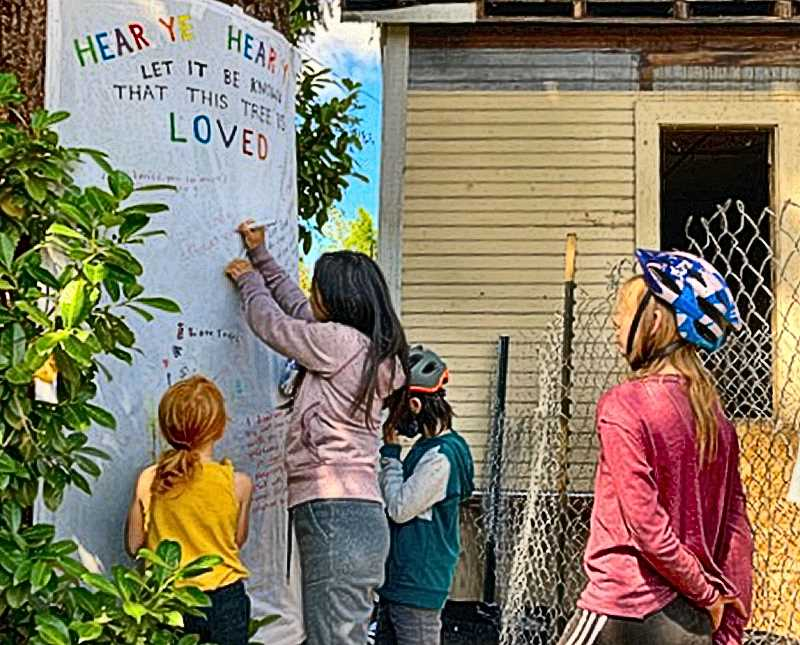 Neighbors write notes on a sign posted on the Sellwood tree they hope to save.