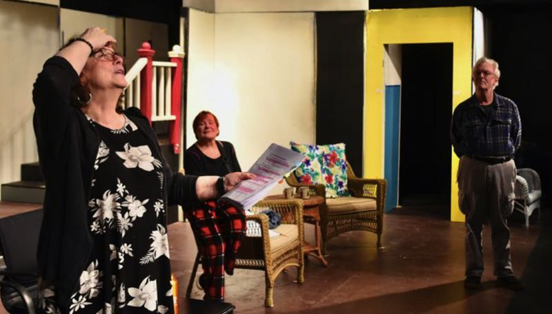PMG FILE PHOTO: BRITTANY ALLEN - Sandy Actors Theatre was forced to close its production of 'Vanya and Sonia and Masha and Spike' after only four shows last year because of the pandemic.