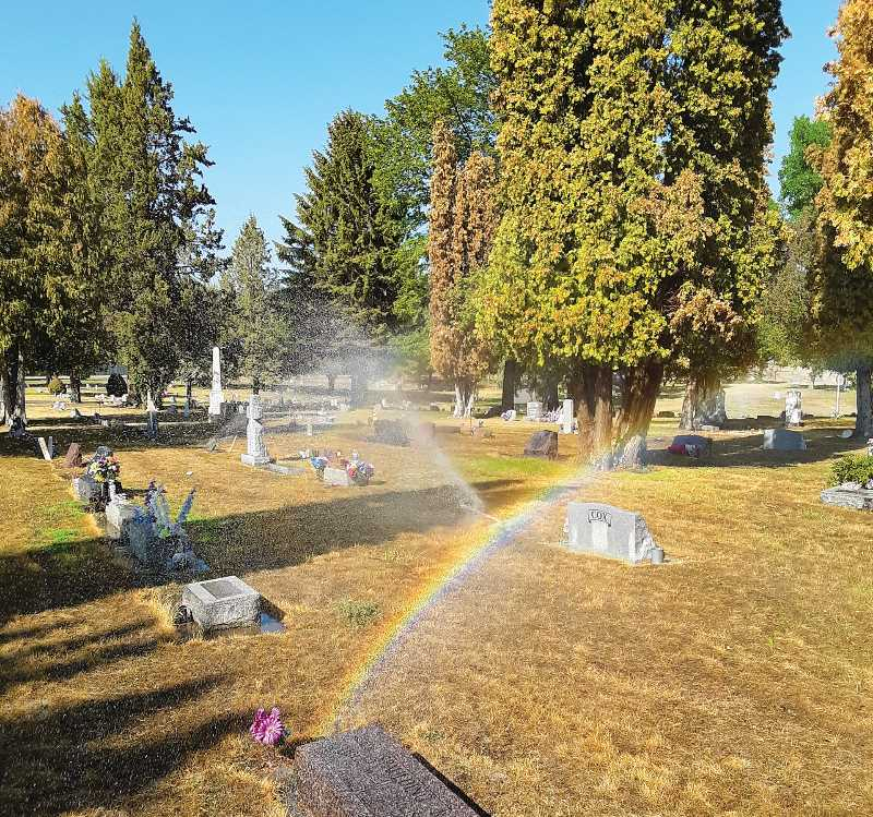 RAMONA MCCALLISTER - Sprinklers have been watering the Juniper Haven Cemetery on a regular basis since the water allocation from several local ranchers and farmers made it possible to resume watering the grounds. It is visible in the above photo that the grass is greening up, and the trees and shrubs are benefitting from the needed water.