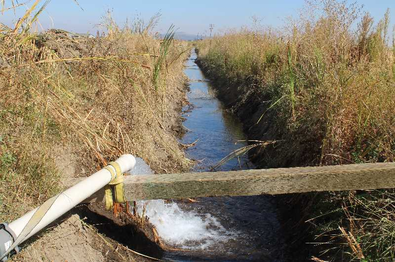 PAT KRUIS/MADRAS PIONEER  - This ditch went dry when the North Unit Irrigation District turned off water to its patrons the weekend of Aug. 21. This is Opal Springs water from the Deschutes Valley Water District. Macy Farms installed meters and is paying to irrigate its potatoes with drinking water.