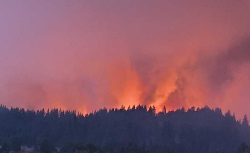 COURTESY PHOTO: RAY DANDENEAU/U.S. FOREST SERVICE VIA OPB  - The Bootleg Fire northeast of Klamath Falls belches smoke into the sky from above a ridge on July 8.