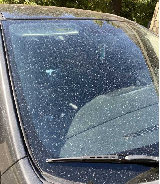 PMG FILE PHOTO - Cars across the Portland metro area were covered in ash Wednesday morning.