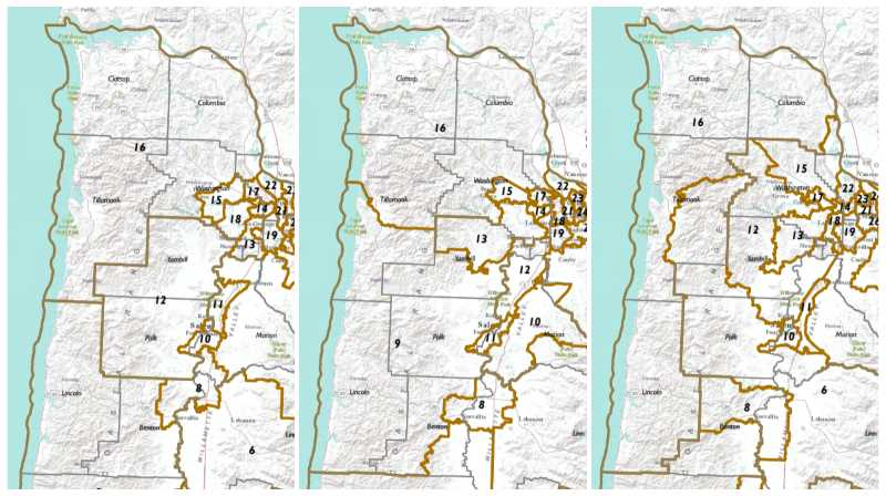 Redistricting highlights urban-rural divide within Columbia County