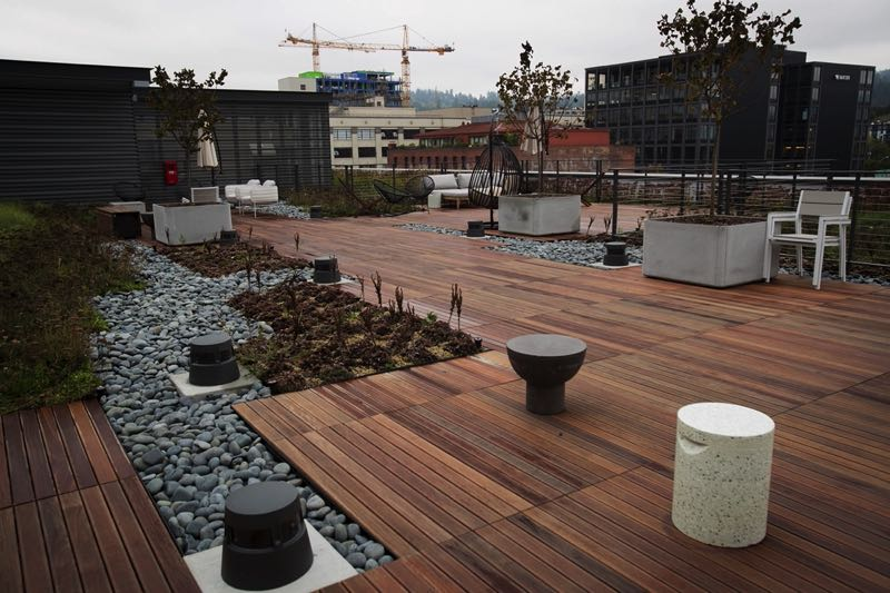PMG PHOTO: JAIME VALDEZ - Vacasa's new roof is part workspace, part green roof, part patio. Two environmentalists say the city should mandate this sort of green roof for all future construction.