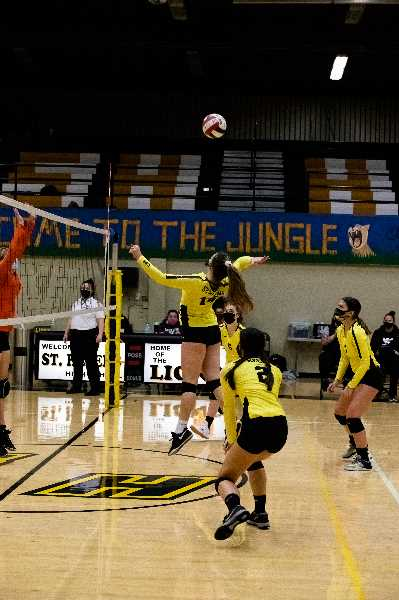 COURTESY PHOTO: MICHELLE NETT - Lions girls volleyball team in action, using COVID precautions.