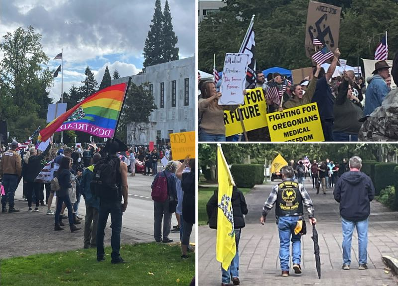SUBMITTED - Supporters of the nonprofit Oregonians for Medical Freedom mobilized at the Oregon State Capitol for a protest on Saturday, Sept. 18.