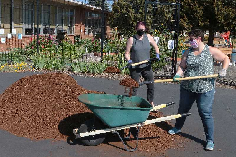 DAVID F. ASHTON - Dana Pambeck and Chelsea Powers, here, were loading a wheelbarrow full of bark dust to distribute on, and to beautify, the Whitman Elementary School campus.