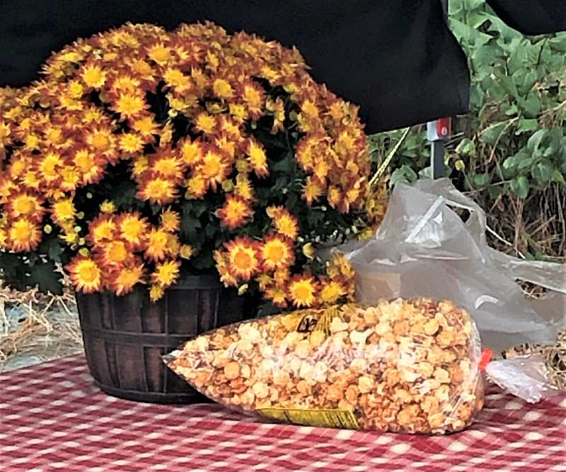 PMG PHOTO: CINDY FAMA - A welcoming table at Celebrate Molalla includes a tempting kettle corn display.
