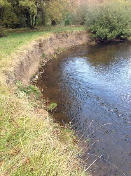 COURTESY PHOTO: CLACKAMAS SWCD - Bank erosion can be a big issue in terms of impacting water quality.